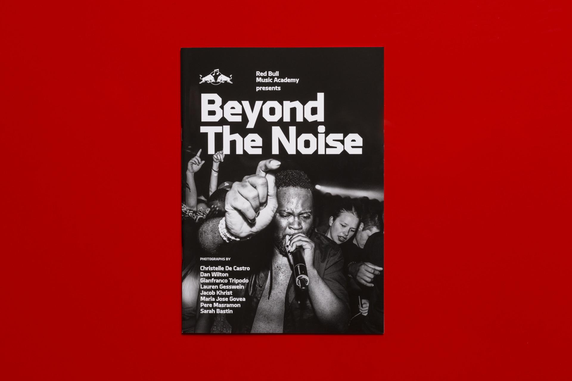 JOHANNES AMMLER Beyond The Noise